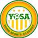 Yong Sports Academy Logo