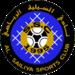 Al Sailiya Logo