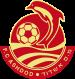 Ashdod MS Logo