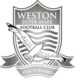 Weston Super Mare Logo