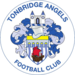 Tonbridge Angels Logo