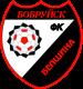 FC Belshina Babruisk Logo