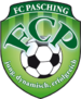 Пашинг Logo