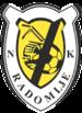 NK Radomlje Logo